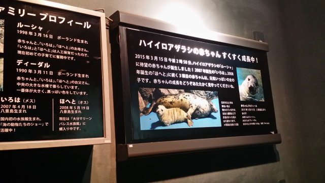 20151210_130719